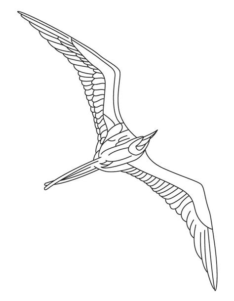 free coloring pages of flying bird