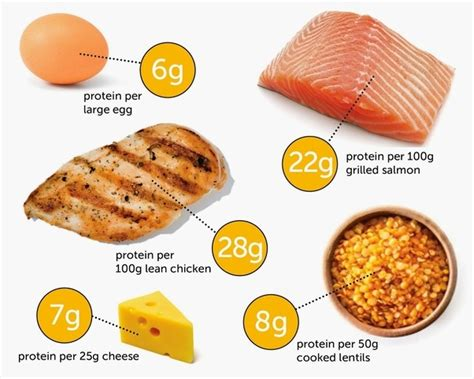 How Much Food Is 200 How To Eat 200 Grams Of Protein A Day Healthy
