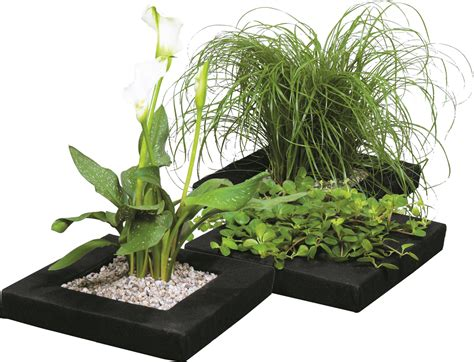 Floating Pond Planter by Floating Plant Island Groep Lilies Water Gardens