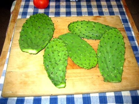 into the cactus kitchen vegan cooking with a southwest flair books how to cook nopales