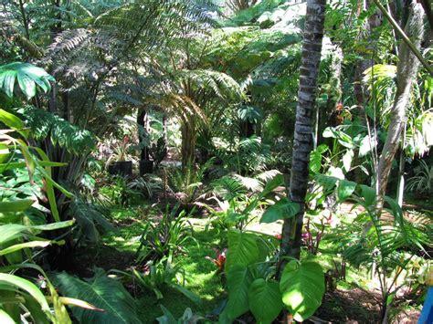 Palm Gardens palm gardens