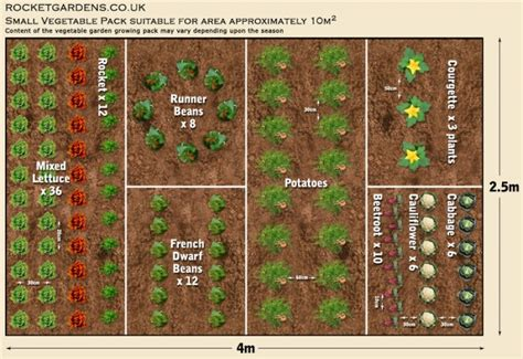 Vegetable Garden Layout Plans And Spacing 19 Vegetable Garden Plans Layout Ideas That Will Inspire You