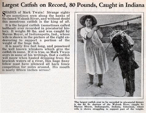Records In Indiana Largest Catfish On Record 80 Pounds In Indiana Modern Mechanix