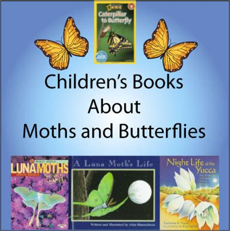 butterfly picture books moth and butterfly books for science books for