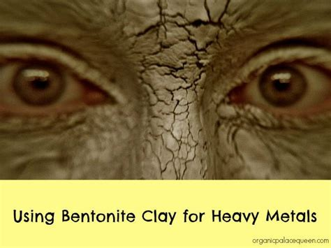 Bentonite Clay Detox For Cats by Bentonite Clay For Heavy Metals Around The Worlds