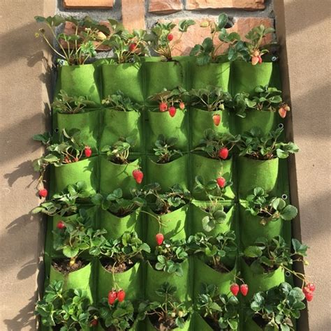 outdoor  pocket indoor balcony herb vertical garden wall