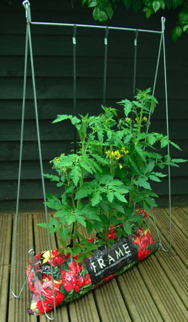 tomato growing system garden products advice