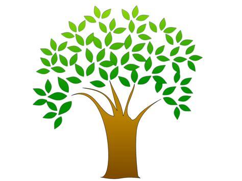 tree clipart free stock photo illustration of a tree