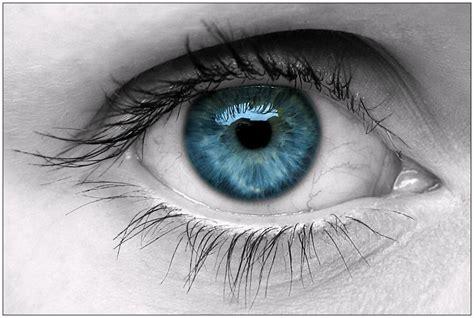imagenes de ojos zoom los ojos marrones inspiran m 225 s confianza que los azules