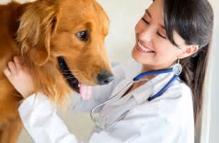 Vets In Westview Veterinary Hospital Inc Veterinarian In