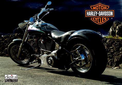 wallpaper free motorcycle harley davidson hd wallpapers wallpaper cave