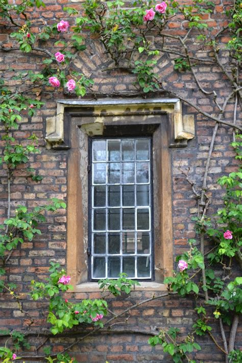 beautiful windows tea with lavera beautiful windows in cambridge england