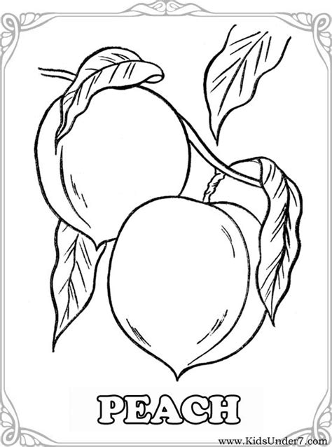 coloring page tree with fruit 20 best free peach fruit coloring pages home of coloring