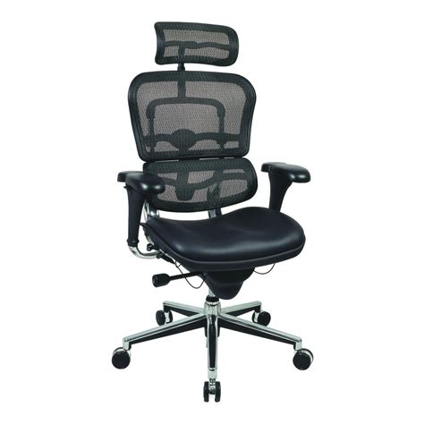 Office Mesh Chair by Eurotech Ergohuman Mesh Office Chair With Fabric Seat