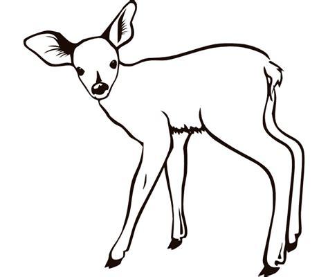 deer template deer templates clipart best