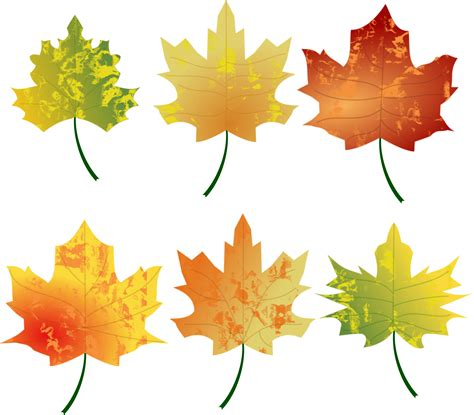 clipart autumn leaves clipart autumn leaves
