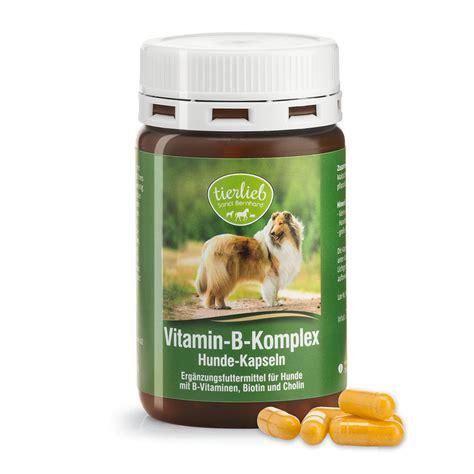 vitamin b for dogs vitamin b complex capsules kr 228 uterhaus sanct bernhard shop