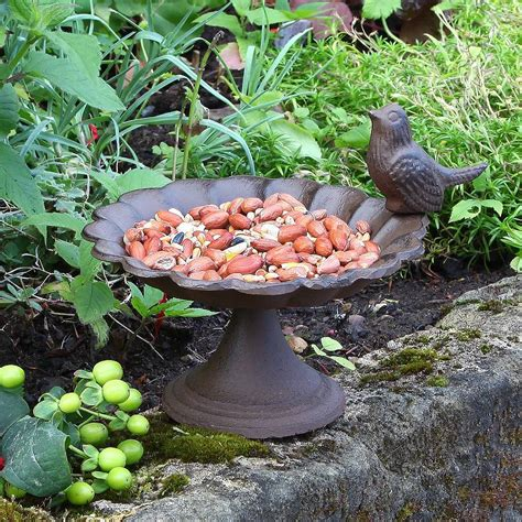 love birds bird bath with free 1kg bird food by dibor