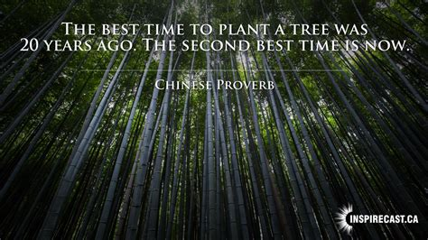 best time to plant the best time to plant inspirecast
