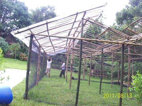 creating a mini bamboo greenhouse part 2 theweekendfarmer