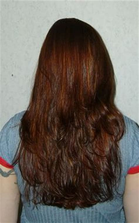 light mountain bright light mountain bright henna hair dye review pictures