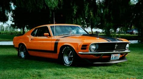 boss  mustangs  ford mustang ford mustang