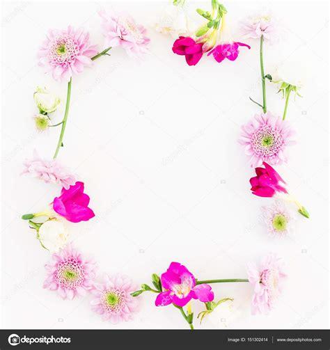 mooie bloemen afbeeldingen mooie bloemen op witte achtergrond stockfoto 169 keola