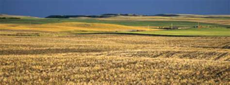When Was The Interior Plains Formed by Interior Plains Land Form Regions Of Canada