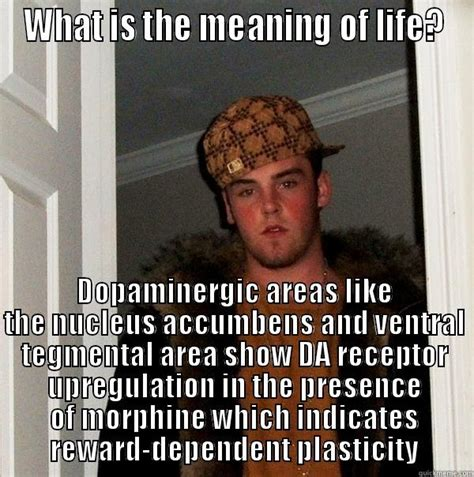 The Meaning Of Meme - which memes mean what image memes at relatably com