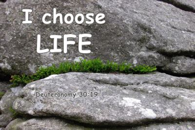 choose life  death scripture blessing  cursing