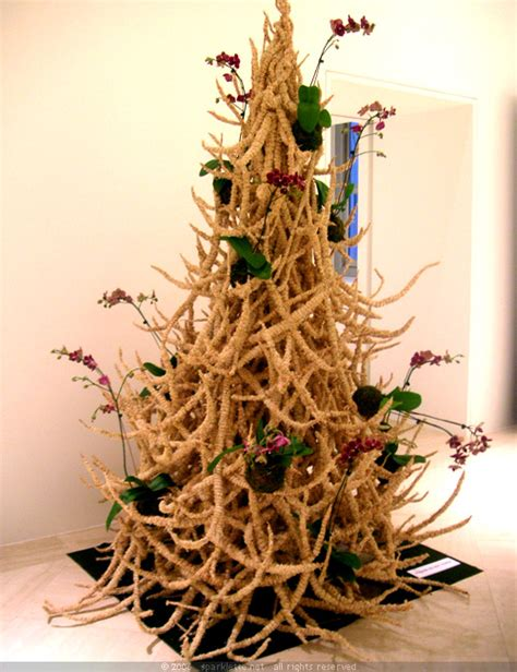 Images Of Unusual Christmas Trees | deck the holiday s some unique and unusual christmas trees