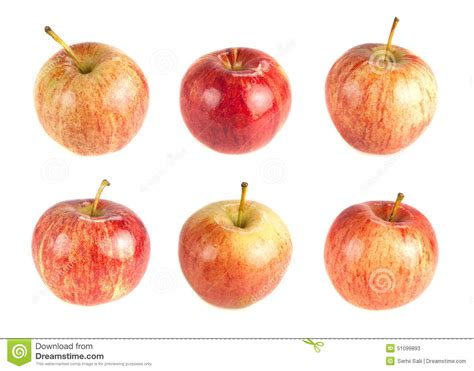 Choose Your Apple by Six Ripe Apples On A White Background Stock Image
