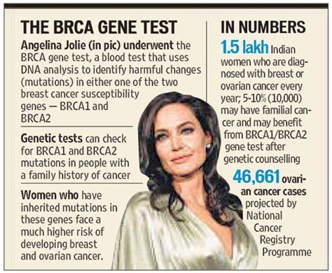 understanding brca living with the breast cancer gene books could style gene testing for cancer help