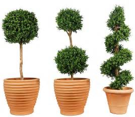 delightful Artificial Plants For Home Decor #1: artificial-topiary-lge.jpg