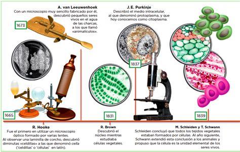 biolog 237 a y geolog 237 a smsavia la celula profesor en lnea 1 la c 233 lula biolog 237 a y geolog 237 a 4 eso anaya on