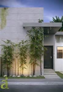 jardines delanteros minimalistas buscar con