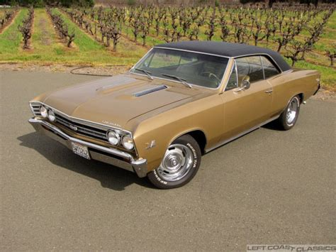 1967 chevrolet chevelle ss 396 for sale 1967 chevrolet chevelle ss 396 for sale