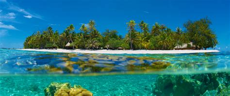 islands vacation islands beaches reefs exotic island vacations exotic honeymoon destinations
