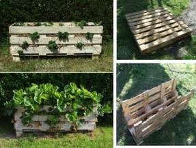 learn how to make a strawberry pallet planter diy craft