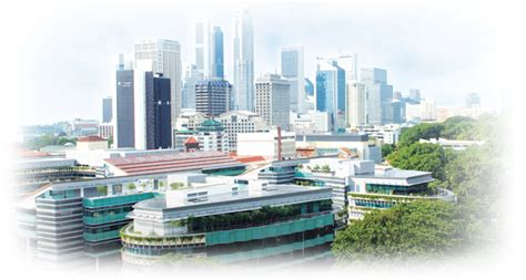 Smu Singapore Executive Mba by Programme Overview Welcome To Kong Chian School Of