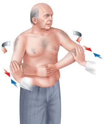Tes Iq Kemuan Daya Pikir belly press test subscapularis