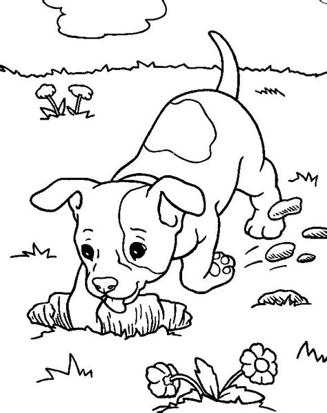 dog digging coloring page drawing digging dogs google search inspiring pinterest