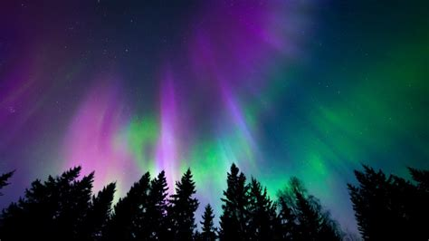 northern lights canada 2017 air canada to launch vancouver yellowknife flights