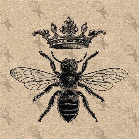 tattoo of queen bee vintage image queen bee queen crown printable digital