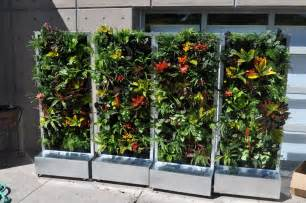 Vertical Garden Plans by Plants On Walls Vertical Garden Systems Conservation
