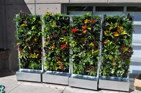 plants on walls vertical garden systems conservation garden park s vertical garden on wheels