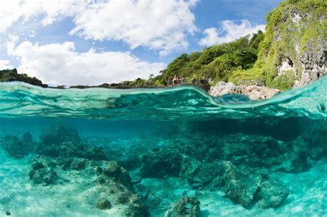 niue dive diving in niue