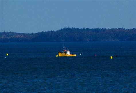small yellow boat small yellow boat by melissa parks