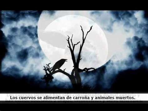 seis de cuervos 8416387583 profec 237 as de los seis cuervos youtube