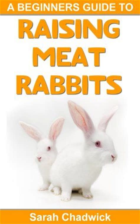 Beginners Guide To Intimacy by 17 Best Images About Rabbits Pens Feeders Etc On